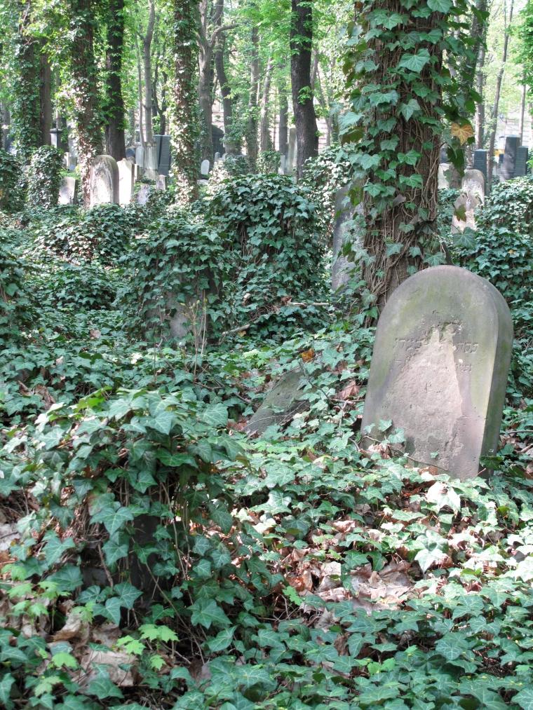 Judisk kyrkogård 3